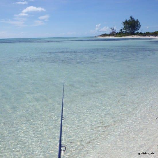 Mindst 100 bonefish langs en af de skønne strande på Cayo Cruze