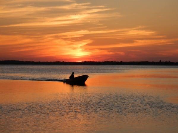 Odense fjord fiskeri