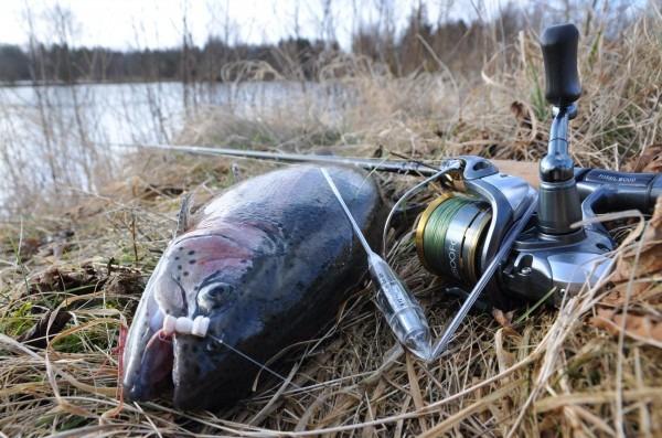 bombarda kursus Jesper L. Andersen Go Fishing - certificeret fiskeguide