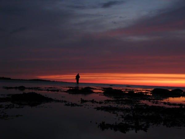 Natfiskeri efter havørred, de bedste pladser på fyn