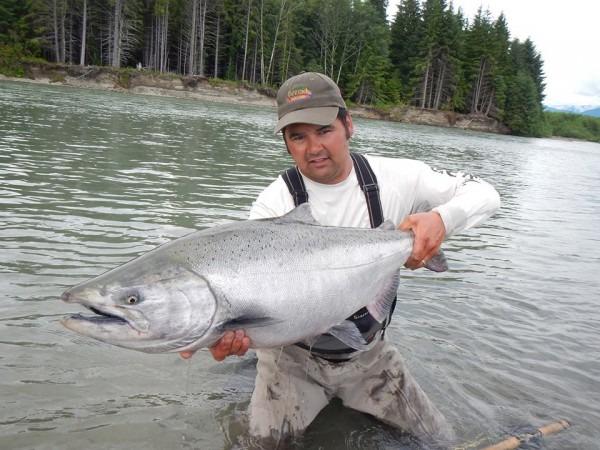 big fresh chinook Skeena river go fishing getaway tours fiskerejser
