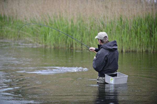 fiskeri med flue efter gedder fiskekursus med guide