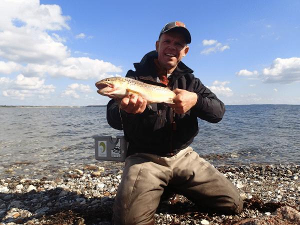 avernakoe niklas fiskeguide fyn