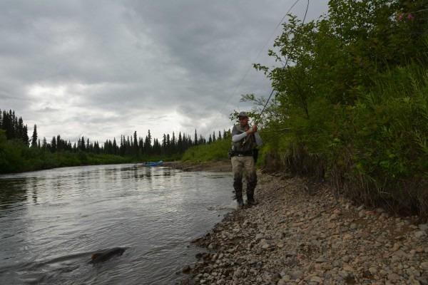 alaska floattrip talachulitna river