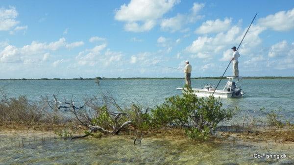 Effektivitet -Der spejdes efter permit fra båden mens jeg vader efter bonefish nær land..