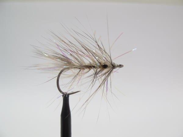 Alive Baitfish - Kystfluen til Havørred på kysten