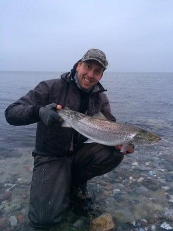 havørredfiskeri, østkysten fyn fiskeguide jesper go fishing