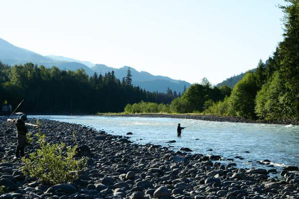 copper river chinook flyfishing, crome King salmon