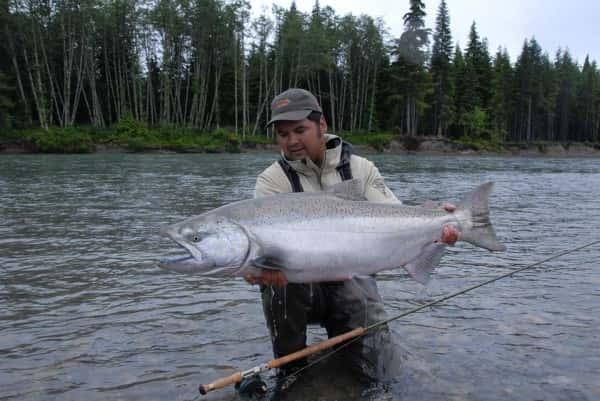 kitimatriver skeenariver copper river british columbia chinookfishing