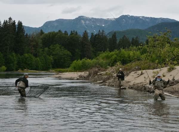 Salmon flyfishing Kitimat River Canada fiskerejse