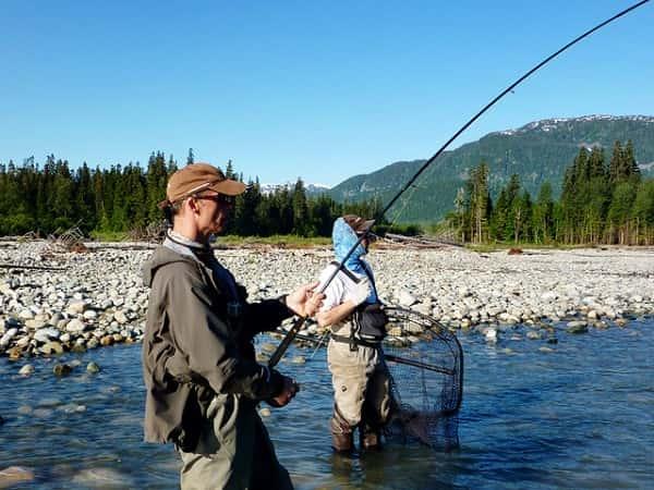 fight king skeena river - Fiskerejse laksefiskeri